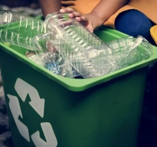 person putting plastic into recycling bin